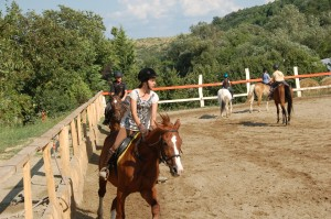 lovarda gyerekek