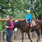 lovagoltatás