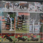 lovas fotók